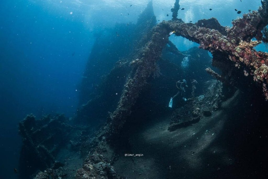 Diving the Wreck in Bali: Underwater Photography Guide
