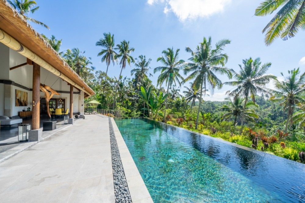 Private Villa Ubud with infinity pool