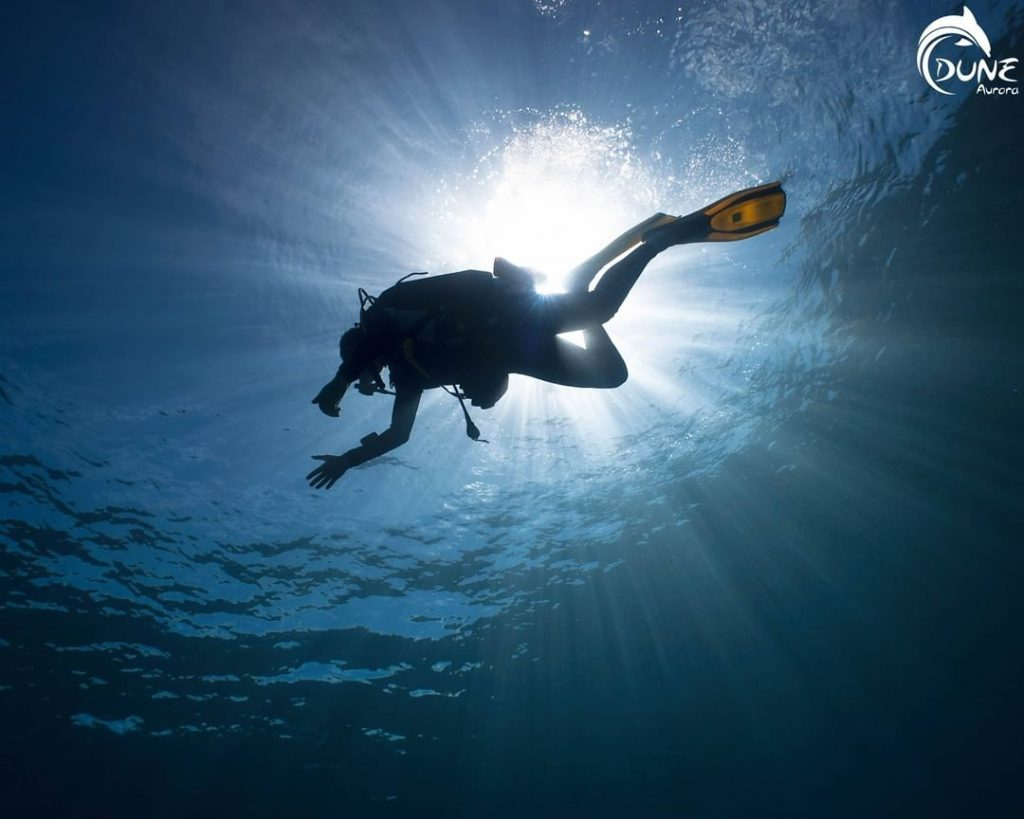 Overcoming Diving Anxiety for Beginners: the Essentials!